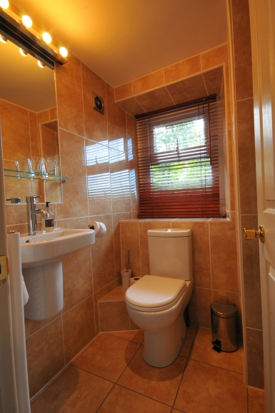 samson-bathroom-1
